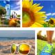 Summer Blog Image